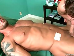 In this gay porn video you can see big phallus